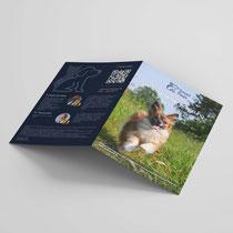 Fotoshooting Hund und Design der Imagebroschüre