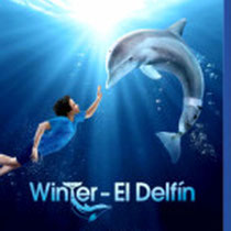 Winter: El delfín