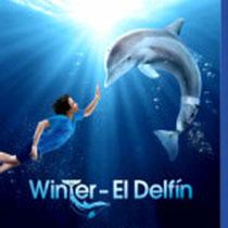Winter: El delfín