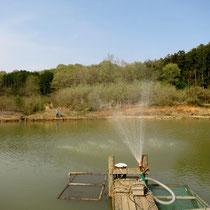 新散水ポンプ