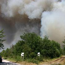 Forêt de Lacanau, départ de feu, été 2012