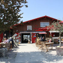 dégustation d'huitres à la cabane du port de Larros (B. Lasserre)