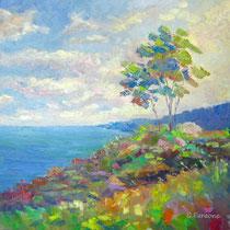 """""""Paesaggio marino"""" olio su tela cm 60x60 (Codice 254)"""
