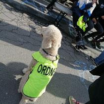 Der Veranstalter hat sich viel Mühe bei der Orga gegeben.