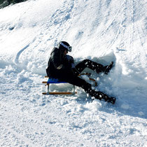 Amber on the sled
