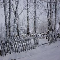 une petite clôture ancienne