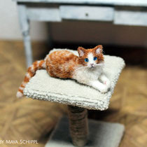 GINGER 1:12 CAT WITH BLUE EYES