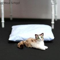 "1:12 CAT ""LISA"""