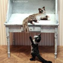 1:12 RAGDOLL & TUXEDO CAT