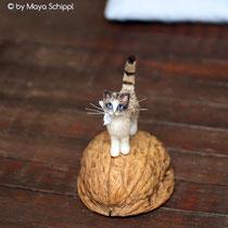 """TINY """"WALNUT CAT"""""""
