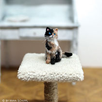 CUTE TINY 1:12 CALICO KITTEN