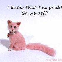 1:12 PINK CAT