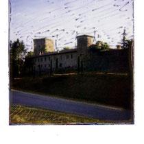 461.05 © 2007 Alessandro Tintori