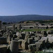 292.07 Baelo Claudio. Il complesso archeologico di Baelo Claudio si incontra proseguendo da Vejer de la Frontera verso Tarifa. © 1999 Alessandro Tintori