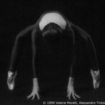 C1.28a © 1999 Valerie Morelli, Alessandro Tintori