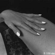 240.15a © 1998 Alessandro Tintori