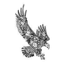 """""""Adler/Freedom"""" - © Judith Köster"""