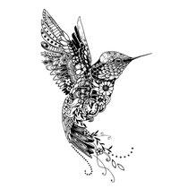 """""""Kolibri"""" - © Judith Köster"""
