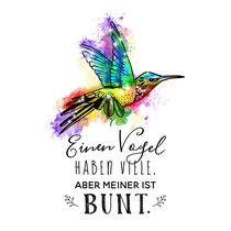 """""""Kolibri bunt"""" - © Judith Köster"""