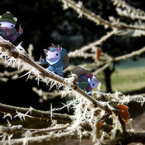 """Ice Gnomes"" - © Stefan Prochaska"