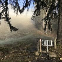 Alle Wege offen, Licht in Sicht, Jahreswechsel Januar 2020