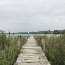 Unterwegs am Pfäffikersee, September 2019