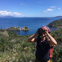 Exkursion Insel Port-Cros, Mai 2018