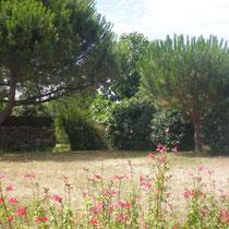 Le jardin vu depuis la terrasse