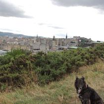 Mit Hund in Edinburgh