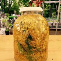 Настойка собственного изготовления  - из цветков одуванчика, мяты и мелиссы. Фото из архива Д.Ирбитса