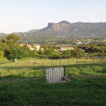 vue sur la plain de Cuttoli
