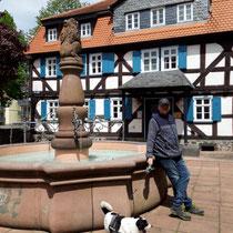 Löwenbrunnen mit Brauhaus