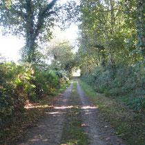 Chemin de Compostelle après Liny