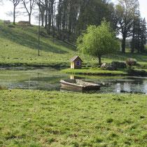 Plan d'eau aménagé près de la chapelle du Krann