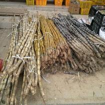 Bambus, den man kauft um ihn dann später… ja was? Richtig, zu ESSEN! Fühle mich wie ein Panda, schmeckt aber eigentlich sogar ganz gut :P