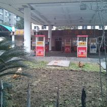 Da liefen ernsthaft zwei Hühner vor dieser Tankstelle rum!!!