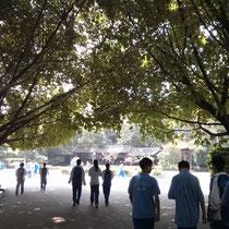 """Ebenfalls an diesem """"blauen"""" Tag - wie wunderschön das Schulgelände doch ist! :D"""