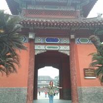 Und da bin ich nochmal alleine unter einem riesigen Tor, das total schön verziert war und durch das man den Tempel erreicht hat.