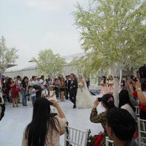 Da kommt das Brautpaar :)