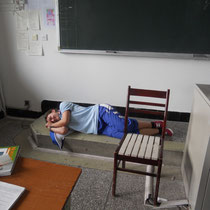 Luzi hat sich mal eben in einer von unseren Freistunden im Klassenzimmer auf den Boden gelegt und PENNT.