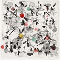 Kristin Finsterbusch, Insekten L2, Tiefdruck, vernis mou, Tusche, Aquarell, 2013, 20 x 20 cm