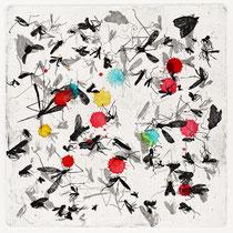 Kristin Finsterbusch, Insekten L1, Tiefdruck, vernis mou, Aqurarell, 2013, 20 x 20 cm