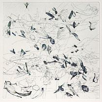 Kristin Finsterbusch, Sammlung 3b, Tiefdruck, vernis mou, Farbstift, 2013, 30 x 30 cm