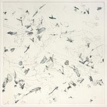 Kristin Finsterbusch, Sammlung 2b, Tiefdruck, vernis mou, Farbstift, 2013, 30 x 30 cm