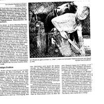 Zeitungsausschnitt Augsburger Allgemeine August 2000