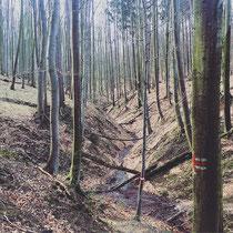 Der Wienerwald - ein wunderschönes Fleckchen Erde