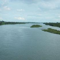 刀水橋からの利根川の眺め