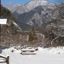 2015.1.16・・・前日の降雪8Cmぐらいでした