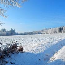 Seltene Wintereindrücke aus unserer schönen Heimat MG