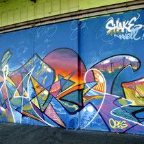 ODEG & JEAN ROOBLE - Spraypaint on wall (4 x 12 m) - Shake Well Festival - Bordeaux (2016)